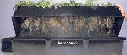 Aeroponic System Genesis Series V